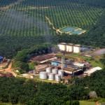 Rajawali Corpora Akuisisi 21,54% Saham BW Plantation